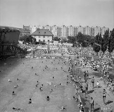 Bratislava, Vienna, Budapest, Old Photos, Paris Skyline, Nostalgia, Memories, History, Country