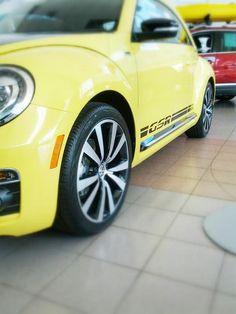 Beetle GSR at Larry Roesch Volkswagen