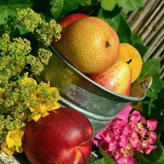 Enjoy nature's bounty! 🍎🍊🍓 #fruitsofsummer #bucketlist #fruit #healthyeating