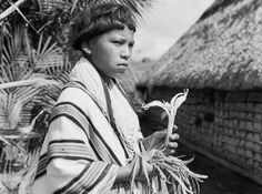 The Lost Amazon - Journey into the Colombian Amazon through the photographs and quotations of naturalist, Richard Evans Schultes. Schultes explored lands where no naturalists had ever been before. His photographs evoke an era when the tropical rainforests stood immense, and the peoples of the forest relied on plants for sustenance as well as medicinal and religious purposes.