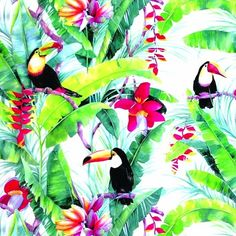 Pattern Cackle Multi from The Walfab Company is the ultimate jungle design, a real tropical