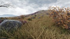 ArtStation - Scottish Highlands UE4, Simon Barle