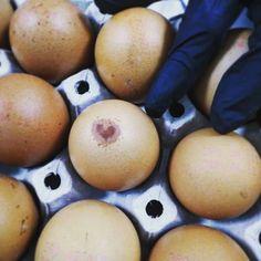 Easter Eggs, Breakfast, Instagram, Food, Morning Coffee, Essen, Meals, Yemek, Eten