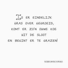 Oude koeien... #grappig #humor #lol #nederlands #tekst #quote