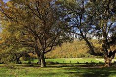 #ParqueNaturalLokiz #TurismoNavarra  #EstellaLizarra  #TurismoEstella