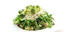 Over de groene salade met avocado en quinoa Deze groene salade met quinoa is een supersnelle en gezonde salade. Ideaal als gezonde lunch, maar ook zeker zeer geschikt als gezonde avondmaaltijd.  Dit recept is in principe binnen …