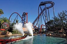 Busch Gardens, Florida 15 Amusement Parks You Need To Visit Before You Die • Page 4 of 5 • BoredBug