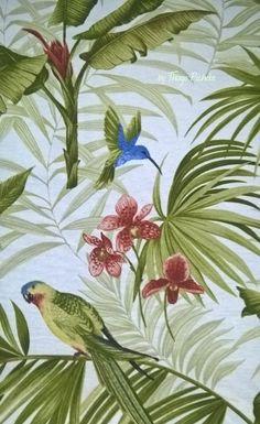 Orquídeas cores