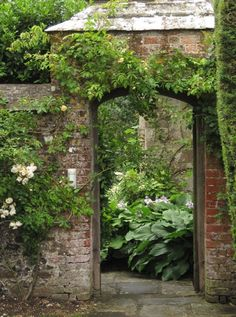 Walled Garden with Hostas and Roses