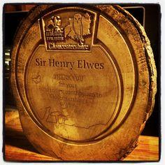Wood, Tree Slice, engrave, Carve, wedding, award, cnc, sign, signage, by CaeloDesign on Etsy
