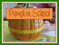 Pumpkin activities for math, science and more for all ages