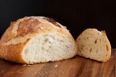 Crusty Rustic Bread (it's no knead!)