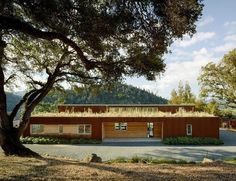 A Vintage Log Cabin in Sonoma Gets an Awesome Modern Makeover