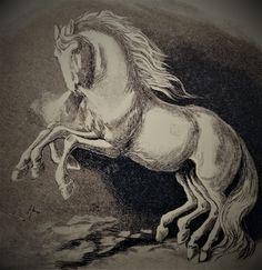 Odins hest Sleipner. født av Loke og faren er Svadilfare