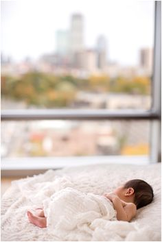 #boston #newborn portraits
