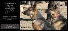 Max n Cin