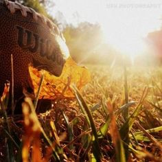 I am ready for Fall and football......my favorite time of the year.