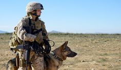 Watch>> Megan Leavey (2017)<<Full Movie HD Online
