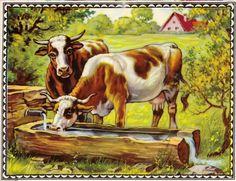 Antikes Glanzbild, Märchenbild, Kuh bei der Tränke, Nostalgie, Kinder-Deko, Bild
