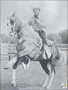 Trigger JR (not Trigger) was played by Allens Gold Zephyr, a Tennesse Walking horse