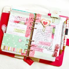 Dark Pink Color Crush Planner:: Anabelle O'Malley