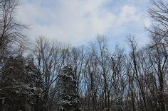 Winter Sky 365 Photo, Winter Sky, First Photograph, Project 365, Photography, Outdoor, Outdoors, Photograph, Fotografie