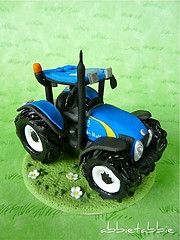 Gotta have a blue tractor cake in the Anderson family! I'm sure Dinah could do something super cute :)