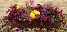 Jak osázet podzimní truhlíky a nádoby