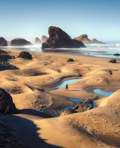 Sea stacks at Oregon coast, USA (by Leif Erik Smith) Oregon USA United States of America Travel Honeymoon Backpack Backpacking Vacation Bucket List Budget Off the Beaten Path Wanderlust Oregon Road Trip, Oregon Travel, Travel Usa, Road Trips, Oregon Coast Roadtrip, Oregon Vacation, Travel Tourism, Beach Travel, Oh The Places You'll Go