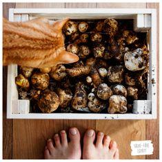 KonyhaKert - Vetésterv részletesen, növénytársításokkal - Sülve-főve együtt Stuffed Mushrooms, Vegetables, Food, Stuff Mushrooms, Essen, Vegetable Recipes, Meals, Yemek, Veggies