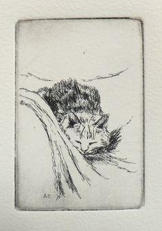 kat - even bijkomen - Andrea Cook - ets 2010