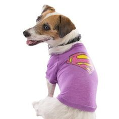 Top Paw Superman Purple Tee by TOP PAW  $10.00