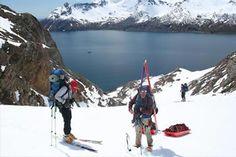 high arctic trekking (wildlife & photography)