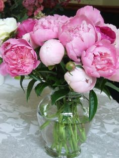 I love peonies! My parents have the hot pink ones in our front garden