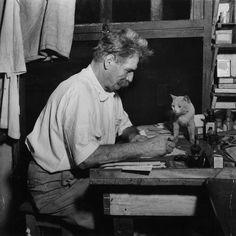 Premio Nobel per la pace 1952, Albert Schweitzer, 1945