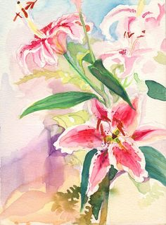 stargazer lily in watercolor - Saferbrowser Yahoo Image Search Results