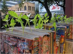 1. Mangas alignés | Le manga farming, lart de recycler ses BD au Japon | MarcelGreen.com