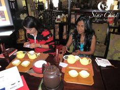 The Art of Brewing Tea guests