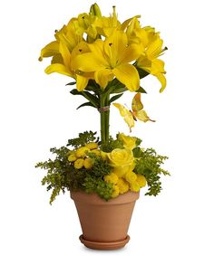 #Easter and #spring floral arrangement - perfect for a centerpiece! by JennyThomasson AIFD CFD of Stems Florist - St. Louis, MO www.stems4flowers.com