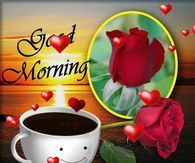 Cute Good Morning Gif morning good morning morning quotes good morning quotes morning quote good morning gifs good morning quote beautiful good morning quotes good morning wishes good morning quotes for family and friends