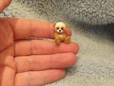 Miniature handmade MINI TINY TEDDY BEAR PANDA TOY ooak DOLLHOUSE ARTISAN