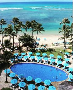 104 Best The Kahala Hotel Resort Images In 2019 Hawaii Resorts