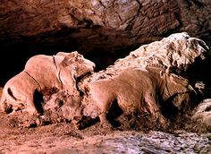 """Statues of bison modelled in clay on floor of Le Tuc d'Audoubert (Ariege) France; c. 15,000 BC; clay low relief; each 24"""" in length"""