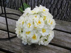 As August draws to a close and summer wanes, it's time to thinks about flowers for next spring. Catalogs of spring flowering bulbs are. Daffodils, Tulips, Daffodil Bouquet, Spring Flowering Bulbs, Blue Gold, Wedding Flowers, Spring Weddings, Reception, Plants