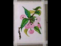 As red as Cherries - water painting by Amrita Tiwary. - YouTube Cherries, Art School, Water, Youtube, Red, Painting, Instagram, Creative, Maraschino Cherries