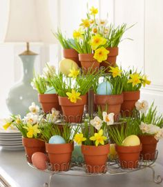 daffodils, grass, and Easter eggs in terra cotta pots sitting in a cupcake stand. Gorgeous