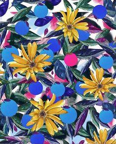 ©Madystudio - Flowers #patterns #flowers#onmady #studio #artdirection #beauty
