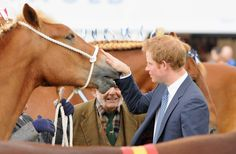 Prince Harry attends the Suffolk Show during an official visit to Suffolk on May 29, 2014 in Ipswich, England.
