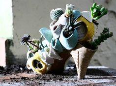 Succulent shoes.