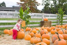 8 san diego harvest farms to welcome fall